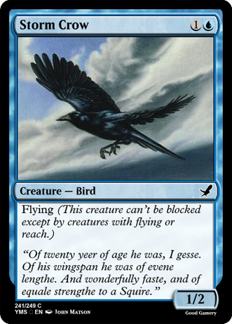 StormCrowSquire
